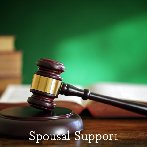 Spousal Support Lawyers